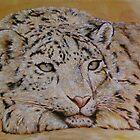 Snow leopard by Troitsky