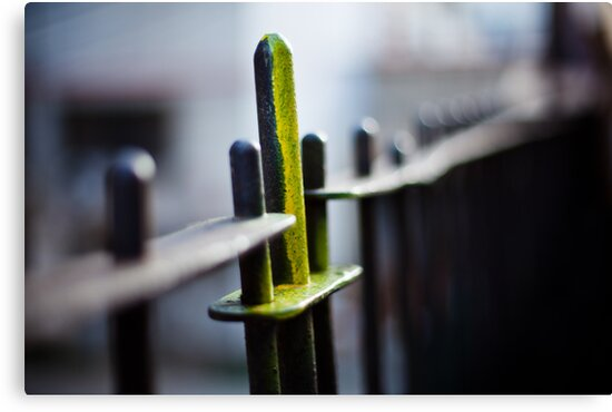 unfinished fence by Victor Bezrukov