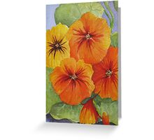 Nasturtiums 2 Watercolour Painting Greeting Card