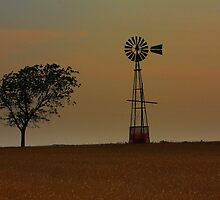 Windmill and Tree in a Field of Dreams by Randall Rogers