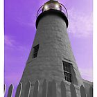 Pemaquid Light House, Maine by Sue Baumgardner
