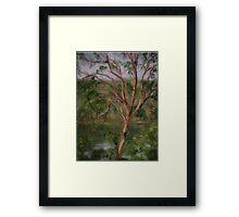 Redgum Framed Print