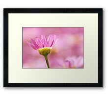 Gentle Floral In Pink Framed Print
