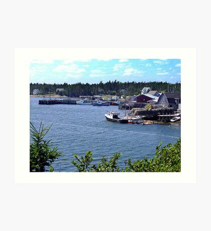 Bush Island-Nova Scotia Art Print