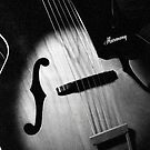 Vintage Harmony Guitar 497 by AnalogSoulPhoto