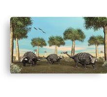 Three Ankylosaurus Canvas Print