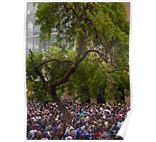 Tree in a Sea of People Poster