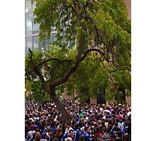 Tree in a Sea of People Photographic Print