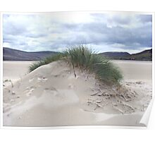 Sand Dune with Mohican Haircut - Western Isles Poster
