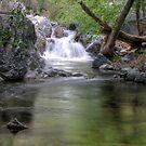Hidden Falls by Eddie Yerkish