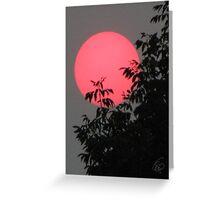 Red Sun Setting Greeting Card