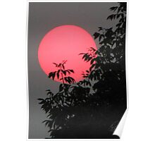 Red Sun Setting Poster