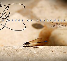 Fly On Wings of Dragonflies, Little Ones by Franchesca Cox