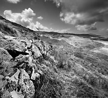 Stone by Stone BW by Andy Freer
