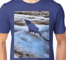 Raven's Mountain Unisex T-Shirt