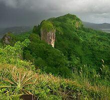 Sokehs Ridge - Pohnpei, Micronesia by Alex Zuccarelli