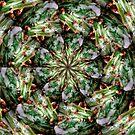 Cactus Flower - Kaleidescope by Artden