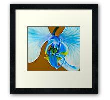 Blue Ribbon Macro Framed Print