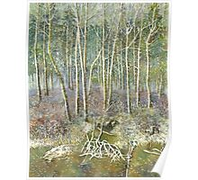winter forest Poster