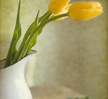 Paris Tulips by NancyMorgantini