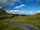 Weynose Pass, The Lake District. by Magic-Moments