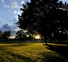 Farm: Evening Light by Eric Lindquist