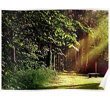 Woodland Glow Poster