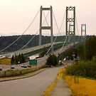 Tacoma Narrows Bridges by Mike Cressy