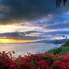 Ocean View by Eddie Yerkish