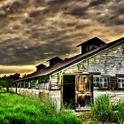 Abandoned Dairy Farm  by BobbiFox