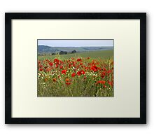 Poppy Dawn Framed Print