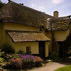 Periwinkle Cottage,Selworthy Exmoor by David-J