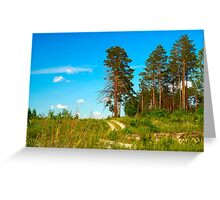 forest view Greeting Card