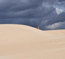 something arriving on the dune! by Alessandra Antonini