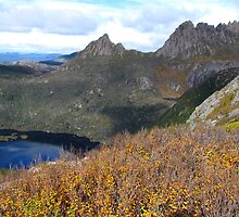 Cradle Mountain from Marions Lookout by Paul Campbell  Photography