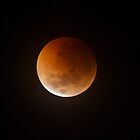 Lunar Eclipse Over Geelong, Melbourne Australia. by LJ_©BlaKbird Photography