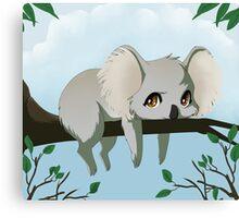 Grumpy koala bear Canvas Print