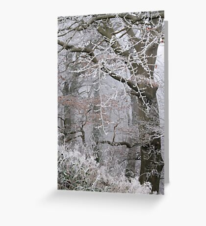 Icy tracery Greeting Card