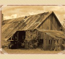 Timeworn Photo Albums and Golden Days by © Bob Hall