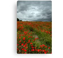 The Clouds Roll In Canvas Print