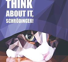 Don't even think about it, Schroedinger! by Efili