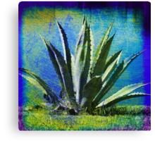 Aloha Blue Canvas Print