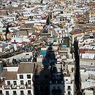 Seville by LenaMay