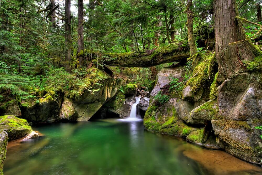 Deception Creek by Brad Granger