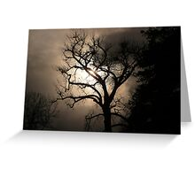 """Mysterious Night Lighting Behind Barren Tree"" Greeting Card"