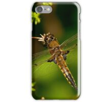 Four Spotted Skimmer Dragonfly iPhone Case/Skin