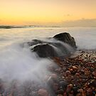 hallet cove rush by adouglas