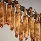 Corns for sale by Indrani Ghose