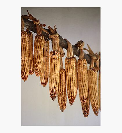 Corns for sale Photographic Print