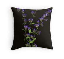 Nepeta Bunch Throw Pillow